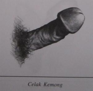 Celak Kemong